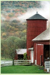 Image of Caretaker Farm silo and barn