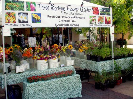 3 Springs Flower Garden farmstead
