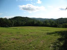 Soliphilia Farm vista IMG_7753