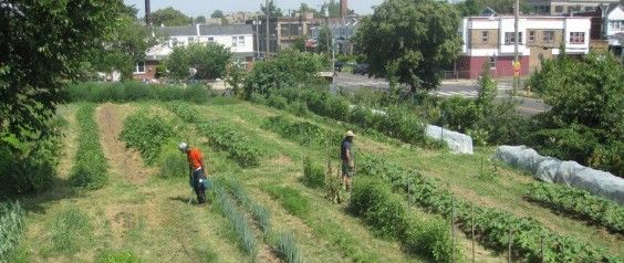 Secure Land for Urban Agriculture