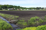 Approaches to Farmland Preservation in the Northeast