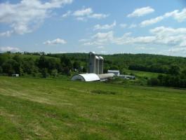 Delapenta farmscape