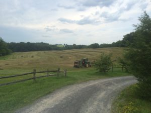 Collaborating to Protect a Hudson Valley Farm