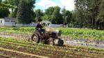 Lansing Farm