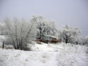 Three Springs Community