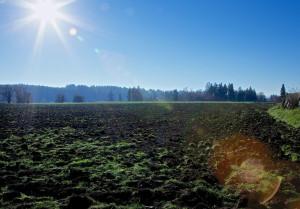 South of the Sound Community Farm Land Trust