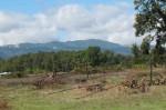 Live Power Community Farm Expands