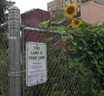 Talking with Funders about Secure Land for Urban Agriculture